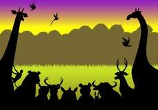Silhouet van dieren het samenkomen Stock Foto's