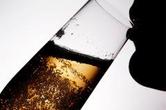 Silhouet van drinkende vrouw 2 Royalty-vrije Stock Foto