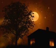 Silhouet van een boom Stock Afbeelding