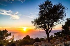 Silhouet van een boom tegen een zonsondergang Stock Afbeeldingen