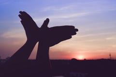 Silhouet van een handgebaar als vogel het vliegen Stock Foto