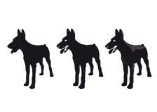Silhouet van een hond Stock Foto's