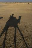 Silhouet van een kameel en een ruiter Royalty-vrije Stock Afbeeldingen