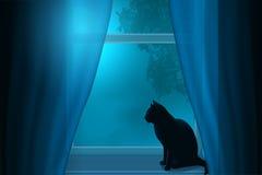 Silhouet van een kattenzitting op een vensterbank onder het licht van de maan in een venster Stock Afbeelding