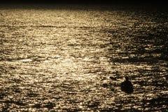 Silhouet van een kayaker bij zonsondergang Royalty-vrije Stock Fotografie