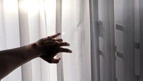 Silhouet van een mannelijke hand die het witte gordijn met het effect van het ochtendzonlicht bereiken stock foto's