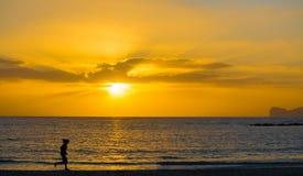 Silhouet van een meisje die door het overzees bij zonsondergang lopen stock fotografie