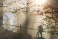 Silhouet van een mens onder zonstralen in de herfstkleuren Stock Afbeeldingen