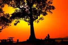 Silhouet van een paar in een zonsonderganglandschap Stock Foto