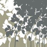 Silhouet van een tak Royalty-vrije Stock Afbeeldingen