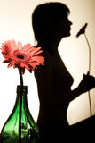 Silhouet van een vrouw Stock Afbeeldingen