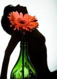 Silhouet van een vrouw Royalty-vrije Stock Foto's