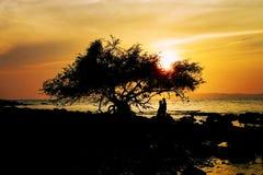 Silhouet van gelukkig paar in liefde op het strand, Minnaars die m hebben stock afbeeldingen