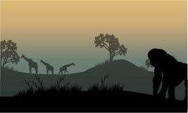 Silhouet van gorilla en giraf Royalty-vrije Stock Afbeelding