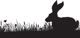 Silhouet van gras en konijn Royalty-vrije Stock Foto's