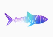 Silhouet van haai op wit Inspirational citaat vectorillustratie Royalty-vrije Stock Fotografie