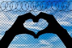 Silhouet van het hart uit de handen Stock Foto