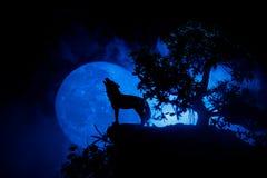 Silhouet van huilende wolf tegen donkere gestemde mistige achtergrond en volle maan of Wolf in silhouet die aan de volle maan hui Stock Fotografie