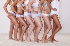 Silhouet van jonge vrouwen Stock Afbeeldingen