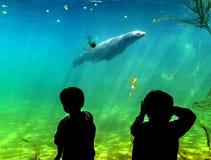 Silhouet van kinderen Stock Fotografie