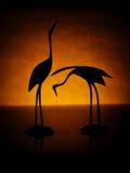 Silhouet van kranen op geel Royalty-vrije Stock Fotografie