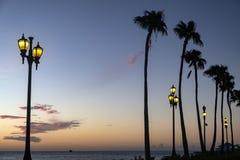Silhouet van Lange Palmen op een Caraïbisch Strand royalty-vrije stock afbeeldingen