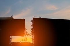 Silhouet van mierenbrug, harmonieconcept Stock Afbeeldingen