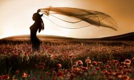 Silhouet van mooi meisje op het papavergebied Stock Foto's