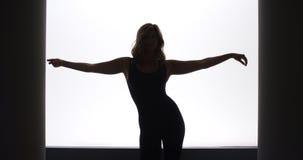 Silhouet van mooie vrouw status stock foto's