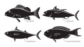 Silhouet van overzeese en riviervissen Stock Foto