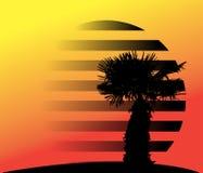Silhouet van palmen Vector illustratie Royalty-vrije Stock Fotografie