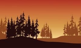 Silhouet van sparren in heuvels Royalty-vrije Stock Afbeeldingen