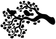 Silhouet van tak met vogels Royalty-vrije Stock Fotografie