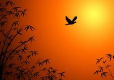 Silhouet van takken van een bamboe. Royalty-vrije Stock Fotografie