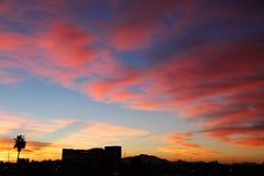Silhouet van tropische stadshorizon onder dageraadhemel royalty-vrije stock foto's