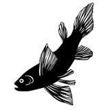 Silhouet van vissen vector illustratie