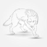 Silhouet van Wolf in Vector Stock Foto