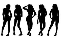 Silhouet vrouwelijke inzameling Stock Fotografie