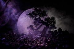 Silhouetboom op volle maanachtergrond Volle maan die boven Japanse stijlboom tegen gestemde mistige hemel toenemen Stock Foto