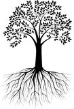 Silhouete d'arbre Images stock