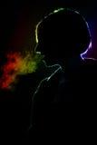 Silhouete de uma mulher Imagens de Stock