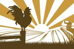 Silhouetjonge haan die op landbouwbedrijf kraaien vector illustratie