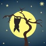 Silhouetknuppel het hangen op een droge boom Stock Afbeeldingen