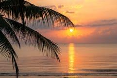 Silhouetkokospalm op zonsopgang, Kalme overzees Royalty-vrije Stock Fotografie