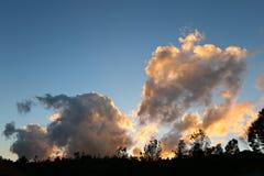 Silhouetlandschap Stock Fotografie