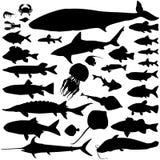 Silhouetreeks van rivier en het overzeese vissen Mariene vissen en zoogdieren Overzees Royalty-vrije Stock Afbeeldingen