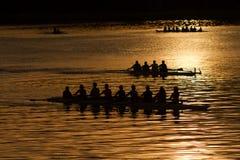 Silhouetroeiers op water bij zonsopgang Stock Afbeelding