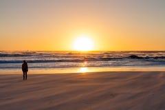 Silhouette девушка наблюдая заход солнца на песчаном пляже с грубым oc стоковое изображение