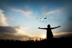 silhouette люди показывая руку с свободой и успехом стоковые изображения rf