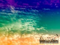 silhouette стеклянное небо кода штриховой маркировки и захода солнца в вечере Стоковое Фото
